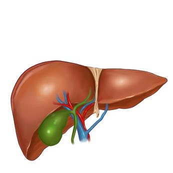 afectaciones hepáticas